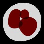 Workshop on Inflammation logo